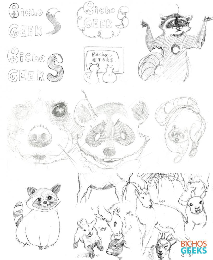 rascunhos e estudos de animais para mascotes de cabra e guaxinim